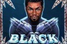 Играть в Black Rider